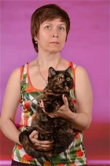 Питомник британских кошек в Киеве